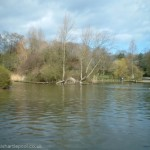 Ward Jackson Park Lake