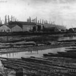 timber ponds 1910